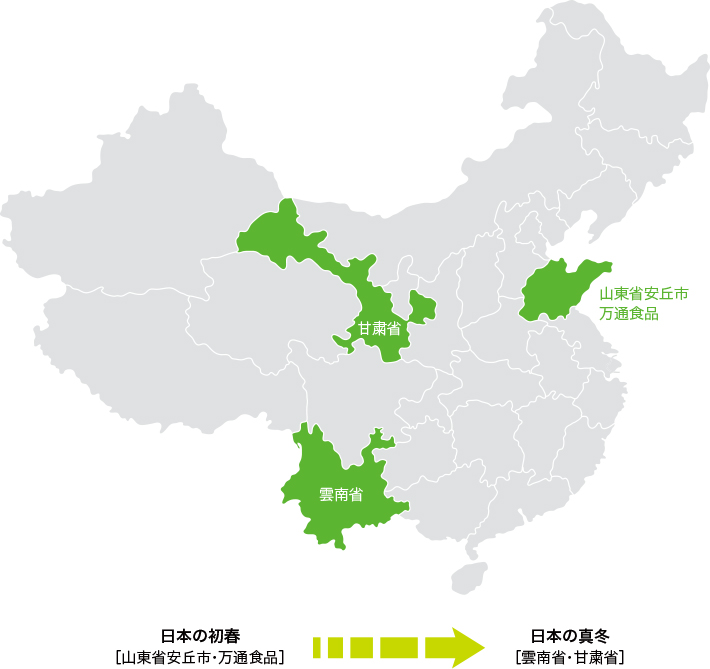 中国玉葱農場 産地リレー