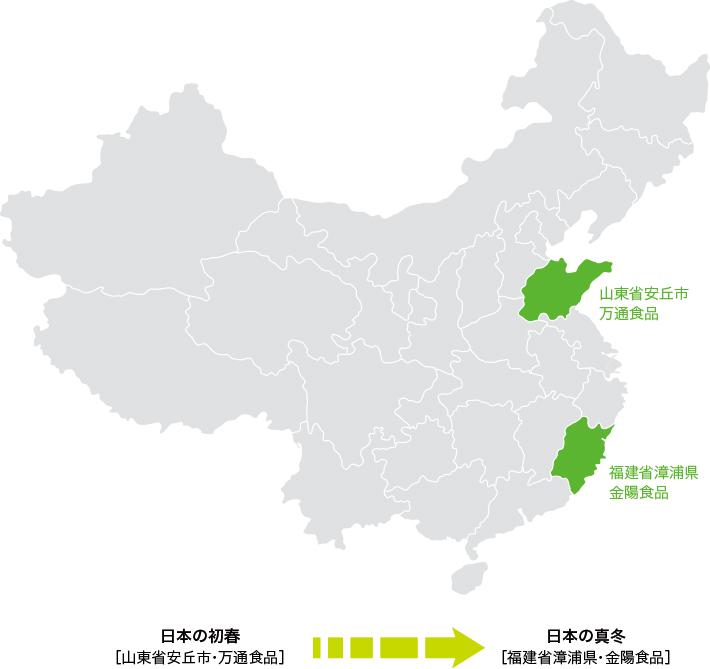 中国青葱農場 産地リレー