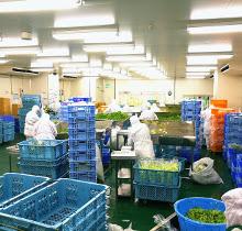 関西工場 加工場