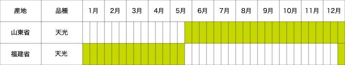 中国長葱農場 年間生産スケジュール
